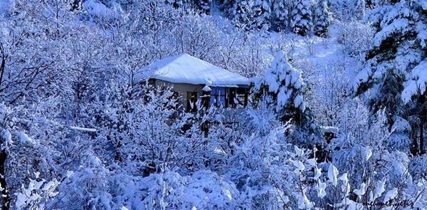 Çamlıyayla'da kar manzaraları