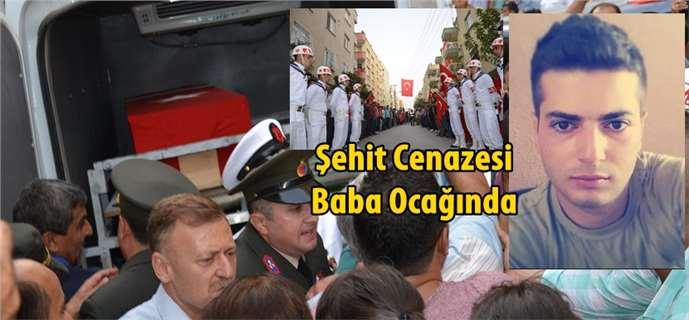 Şehit Cemre Salih Gözen'in Cenazesi Tarsus'a geldi