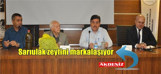 Tarsus'ta organik zeytin üretim alanı genişliyor
