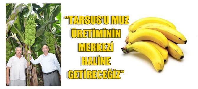 """Ergezer: """"Tarsus'u Muz Üretiminin Merkezi Haline Getireceğiz"""""""