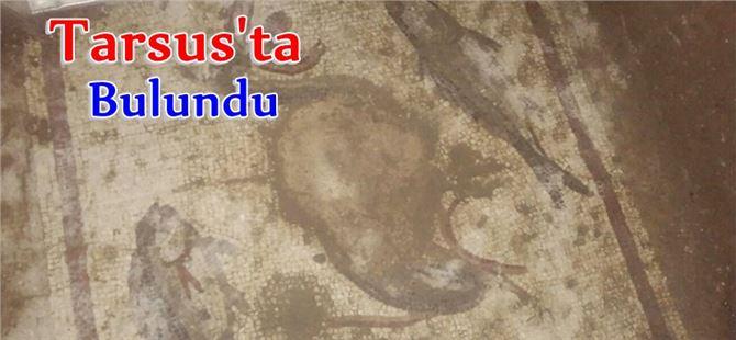 Tarsus'ta Kaçak Kazıda Tarihi Eser Bulundu