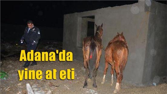 Adana'da yine at eti