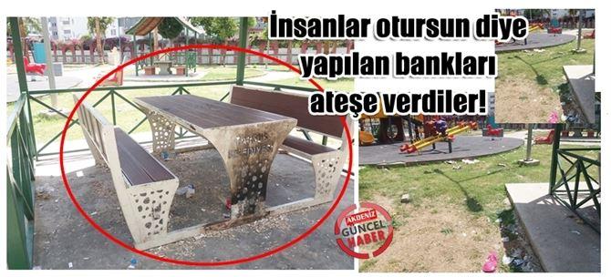 Tarsus'ta çocuk parkındaki bankları yaktılar