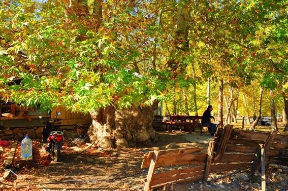 Tarsus'un doğal güzellikleri. Fotoğraf Sanatçıları Ahmet Bağ ve Seyfettin Zeybek'in çekimleri. Belemedik ve Tarsus Berdan baraj gölünden manzaralar