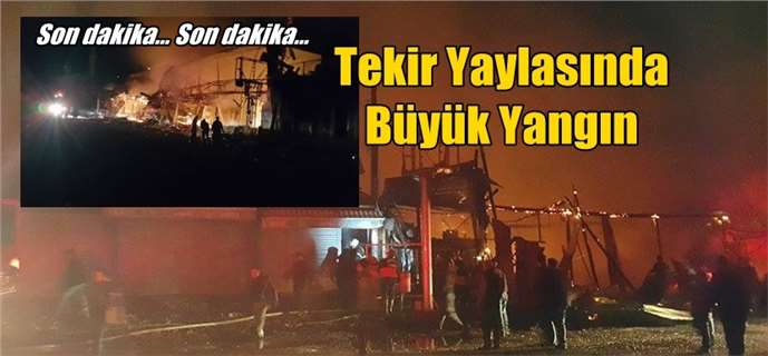 Adana Tekir Yaylası'nda Çatı Restaurant Yandı