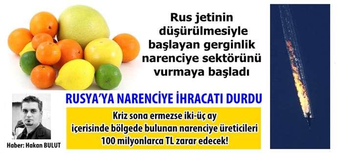 Türkiye'den Rusya'ya Narenciye İhracatı Durdu!