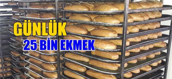 Tarsus Belediye Ekmek Fabrikası günlük 25 bin ekmek üretiyor