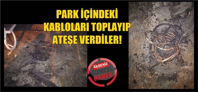 Tarsus'ta park içindeki elektrik kabloları toplanıp, yakıldı