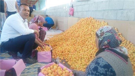 Hemşerileri CHP'li Mehmet Saydam'ı Bağrına Bastı