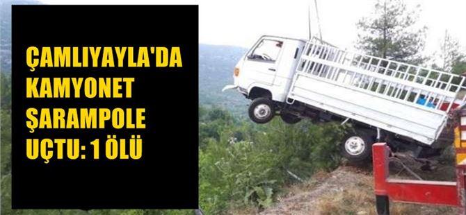 Çamlıyayla'da kamyonet şarampole uçtu: 1 ölü