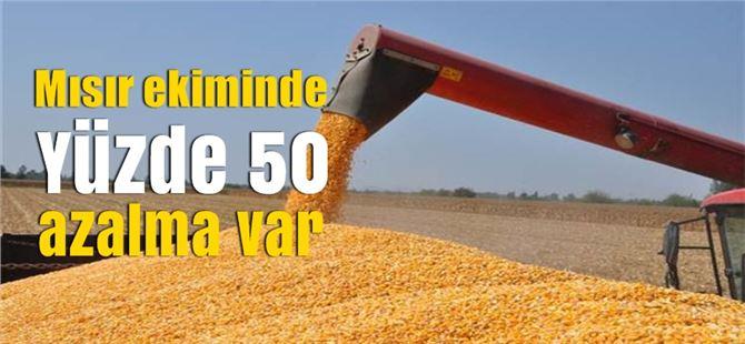 """Ergezer: """"Bu yıl mısır ekiminde %50 azalma var"""""""
