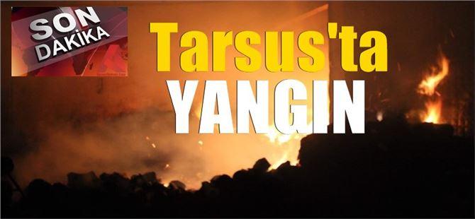 Tarsus'ta gece yarısı pamuk işleme tesisinde büyük yangın