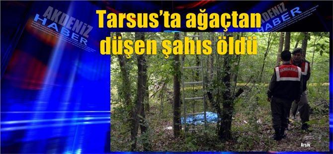 Tarsus'ta ağaçtan düşen şahıs öldü