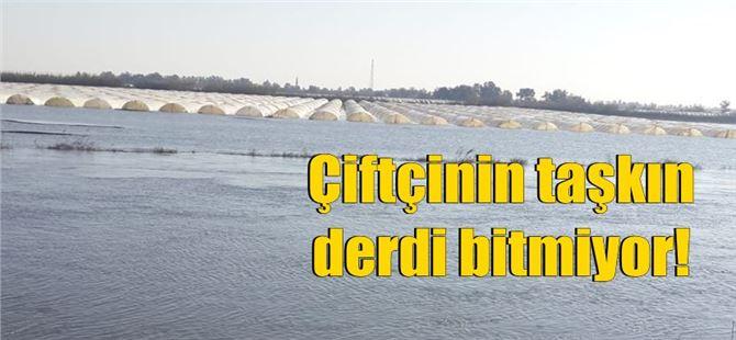 Tarsus'ta baraj kapakları açılınca 30 bin dönüm ekili alan sular altında kaldı