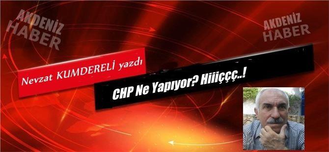 """Nevzat Kumdereli yazdı, """"CHP Ne Yapıyor? Hiiiççç..!"""""""