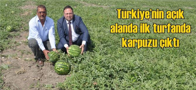 Türkiye'nin açık alanda ilk turfanda karpuzu çıktı
