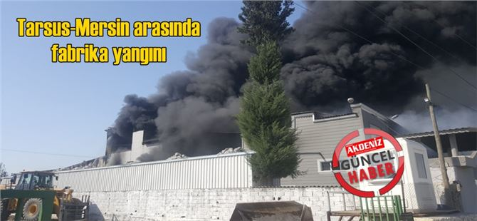 Mersin-Tarsus arasında bulunan strafor fabrikası alev alev yandı