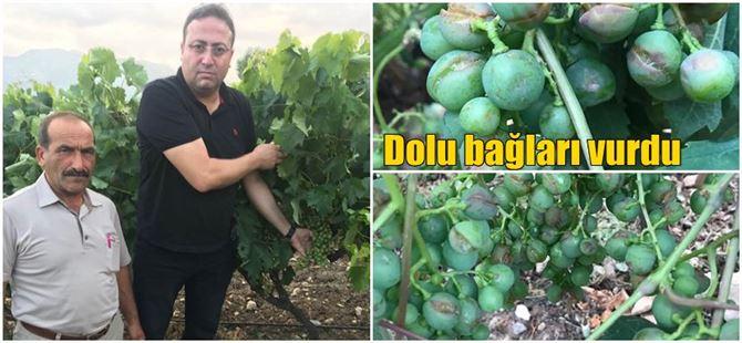 Sağanak ve dolu Tarsus'ta bir kez daha çiftçiyi vurdu