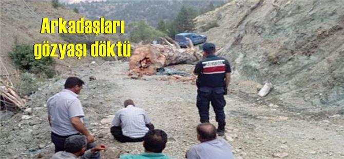 Kesilen ağacın altında kalan işçi yaşamını yitirdi