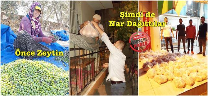 İmece usulü toplanan zeytin ve nar'lar mahalleliye ücretsiz dağıtıldı