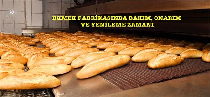 Ekonomik ekmeğe kesintisiz erişim için 1 aylık bakım çalışması