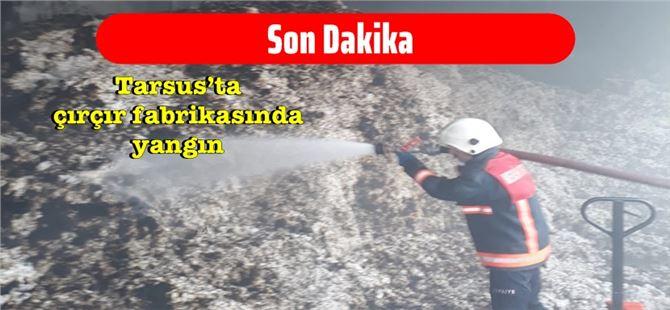 Tarsus'ta bir hafta içerisinde ikinci çırçır fabrikası yangını
