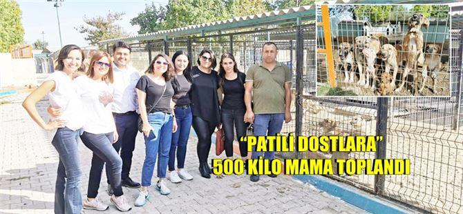 "Tarsus'ta ""Patili Dostlara"" 500 Kilo Mama Toplandı"