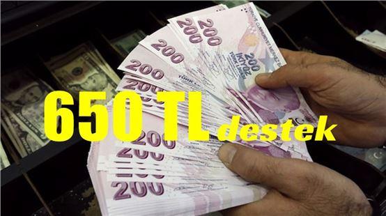 Çalışan anneye aylık 650 lira destek verilecek