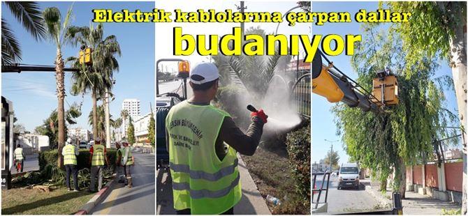 Tarsus'ta kış öncesi bakım çalışmaları gerçekleştiriliyor