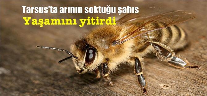 Tarsus'ta arının soktuğu şahıs yaşamını yitirdi