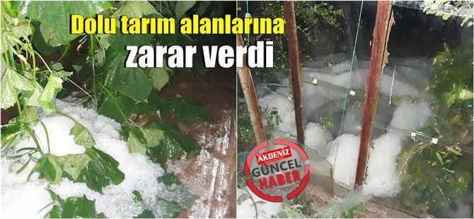 Mersin'de dolu yağışı seralara büyük zarar verdi