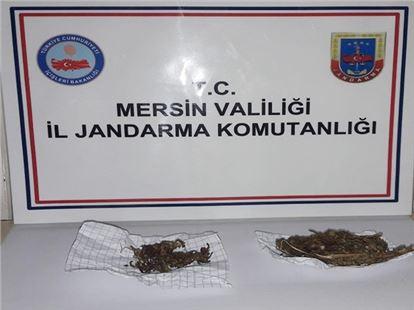 Tarsus'ta uyuşturucu operasyonunda 1 kişi yakalandı