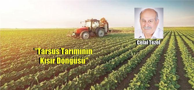 """Celal Tezel yazdı, """"Tarsus Tarımının Kısır Döngüsü"""""""