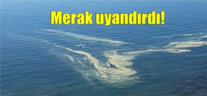 Mersin'de deniz yüzeyinde görülen renkli cisimle ilgili açıklama geldi