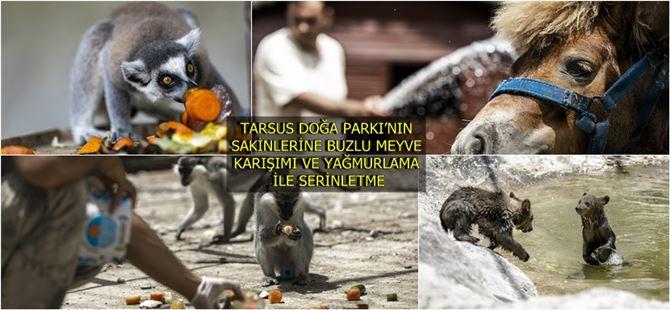 Tarsus Doğa Parkı sakinleri buzlu meyve ve yağmurlama yöntemiyle serinliyor