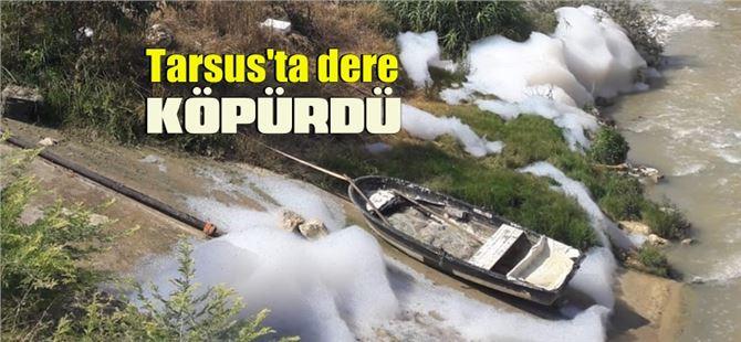 Tarsus Kusun deresi köpürdü!