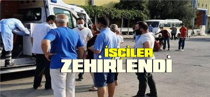 Mersin'de 27 işçi zehirlendi