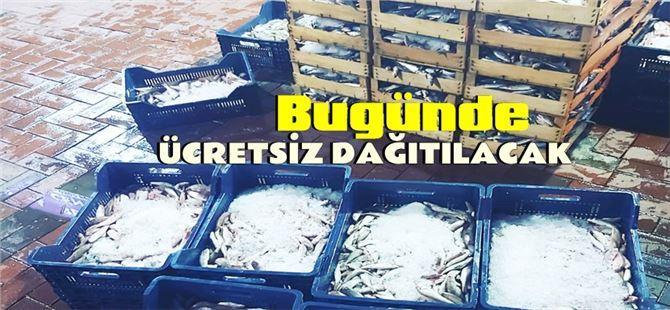 Tarsus'ta hayırsever balıkçı bugünde ücretsiz balık dağıtacak