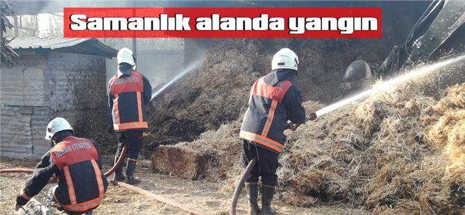 Tarsus'ta samanlıkta yangın