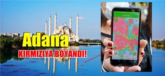 Koronavirüs risk haritasında Adana'da mezarlıklar dışında her yer kırmızı oldu!