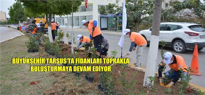 Büyükşehir Tarsus'ta fidanları toprakla buluşturmaya devam ediyor
