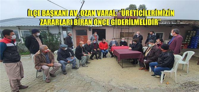 CHP'li 3 vekil ve yöneticilerden Tarsus'ta doludan zarar gören bölgede inceleme