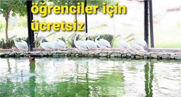 Tarsus Doğa Parkı yarı yıl tatilinde öğrenciler için ücretsiz