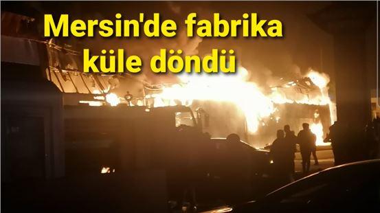 Mersin'de çıkan yangında fabrika küle döndü!