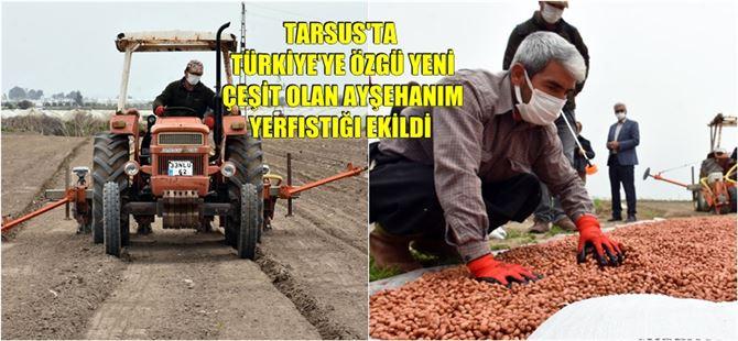 Tarsus Belediyesi, yerli tohumu yaygınlaştırmak adına çaba sarf ediyor