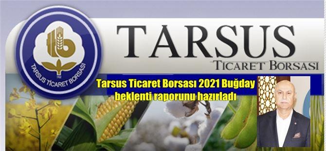 Tarsus Ticaret Borsası 2021 Buğday beklenti raporunu hazırladı