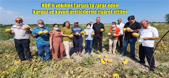 """HDP'li Rıdvan Turan: """"Borç yapılandıracak çiftçinin başı daha büyük bir belada"""""""