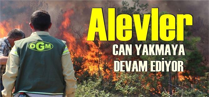 Manavgat'tan acı haber: 2 orman işçisi yaşamını yitirdi