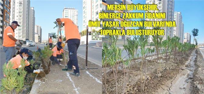 Büyükşehir, kentin refüjlerini renklendiriyor