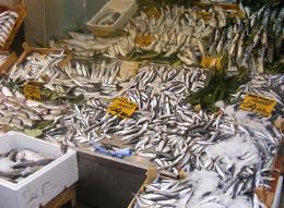 Tarsus Akdeniz-Kent Rehberi (Balıkçılık)